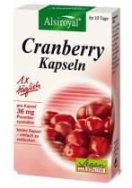 Menofemina cranberry basen plus preisvergleich